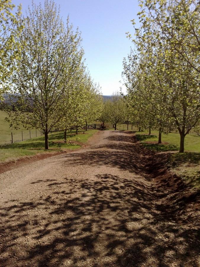 2 farm road