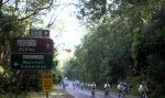 through the royal national park