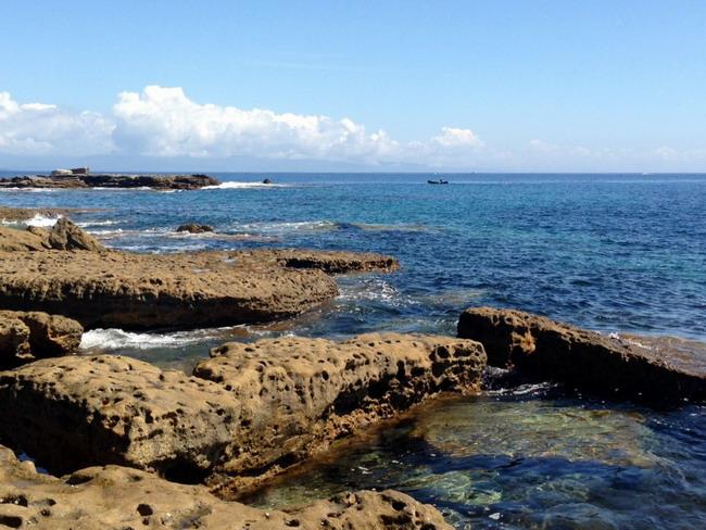 near whale point